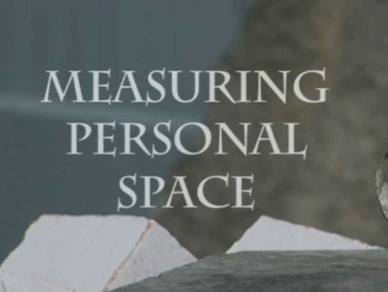 Measuring Personal Space